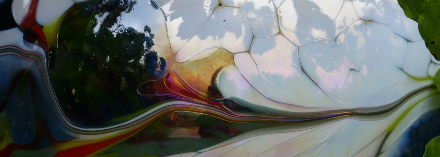Glas 1 Ausschnitt
